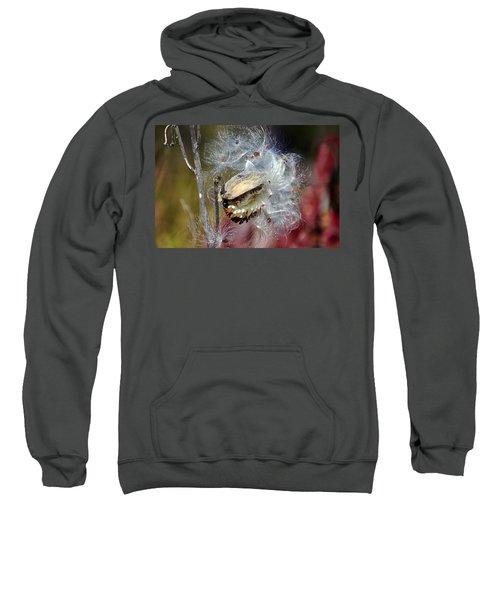 Milkweed Silk Sweatshirt