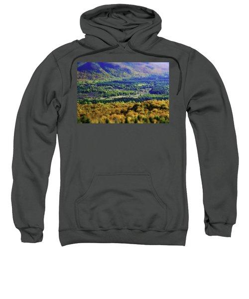 Mini Meadow Sweatshirt