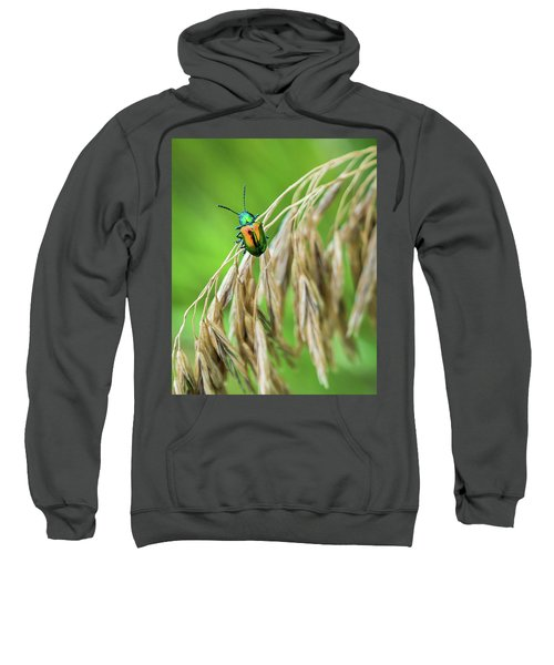 Sweatshirt featuring the photograph Mini Metallic Magnificence  by Bill Pevlor