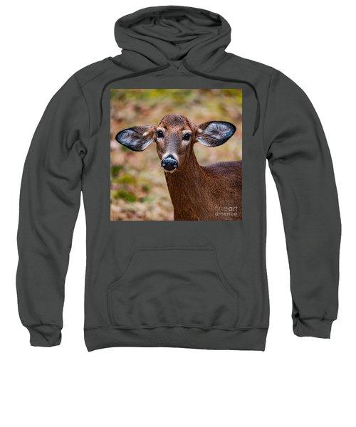 Miss Deer 1 Sweatshirt