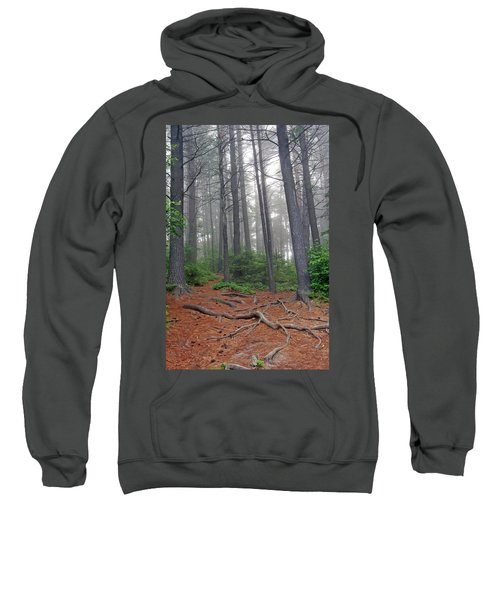 Misty Morning In An Algonquin Forest Sweatshirt