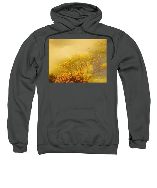 Misty Yellow Hue -poui Sweatshirt