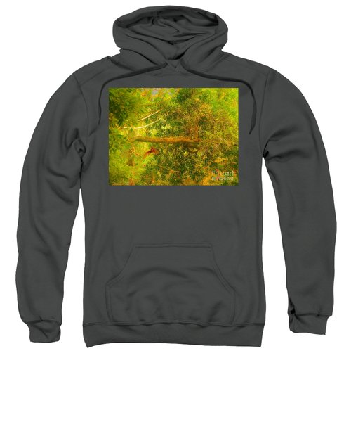 Misty Yellow Hue- Ringed Kingfisher In Flight Sweatshirt