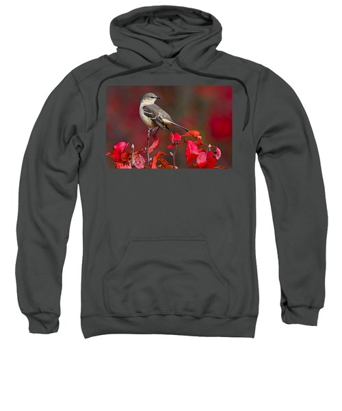 Mockingbird On Red Sweatshirt