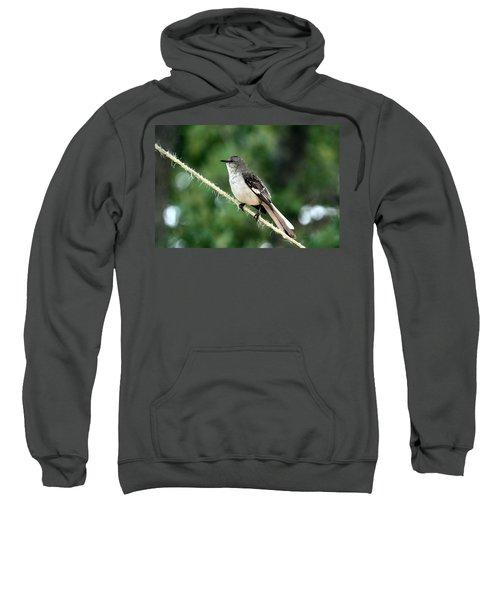 Mockingbird On Rope Sweatshirt