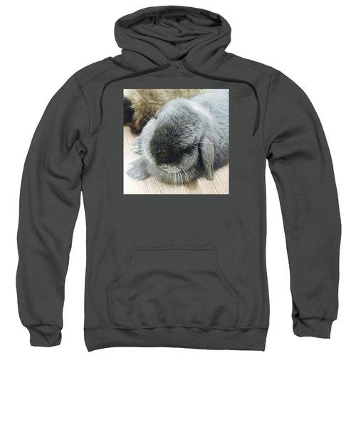 Mococo Sweatshirt by Nao Yos