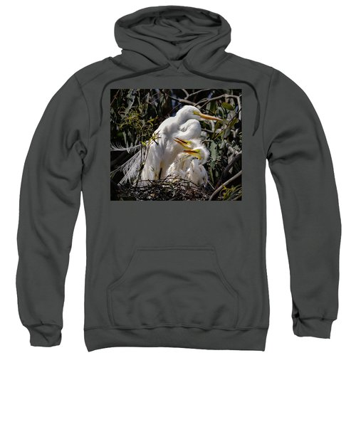 Mom's Watchful Eye Sweatshirt
