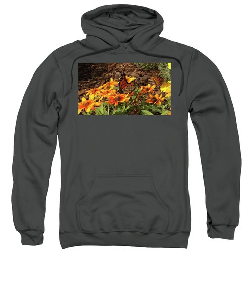 Monarch Butterflies Sweatshirt
