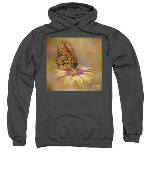 Monarch On A Daisy Mum Sweatshirt