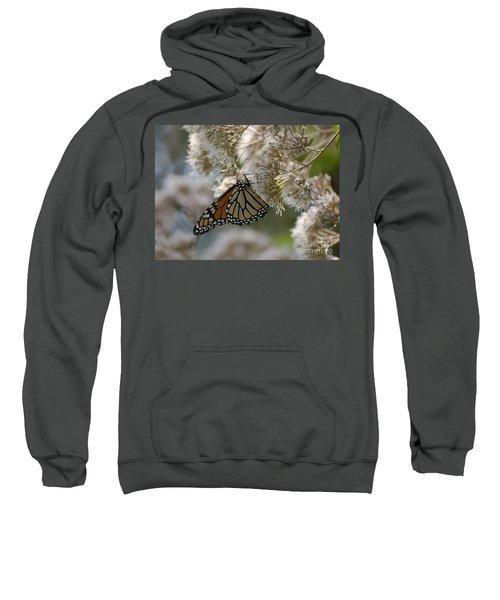 Monarch Pink Sweatshirt