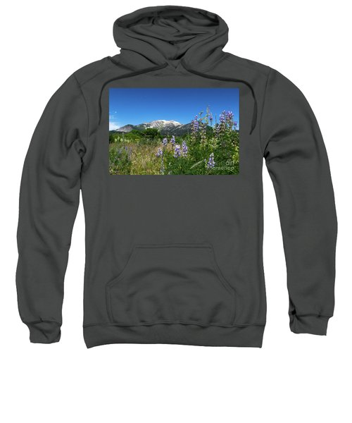 Mammoth Meadow   Sweatshirt