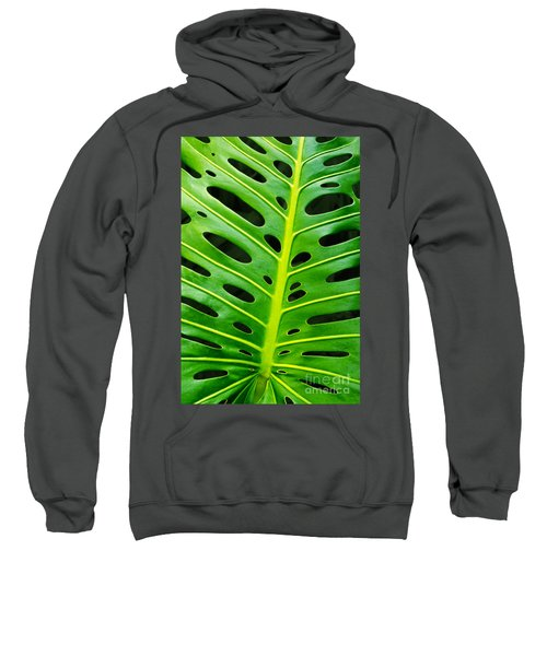 Monstera Leaf Sweatshirt