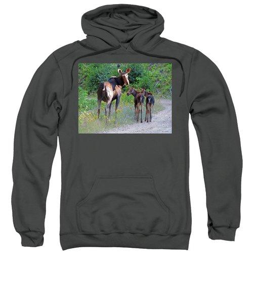 Moose Mom And Babies Sweatshirt