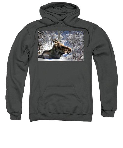Moose On The Loose Sweatshirt