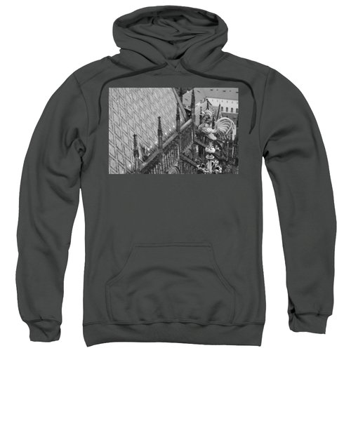 Morning Bird Sweatshirt