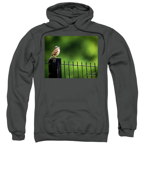 Morning Call Sweatshirt