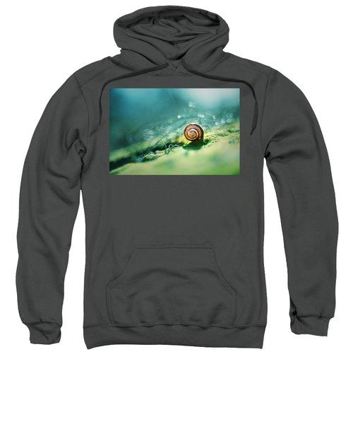 Morning Glare Sweatshirt