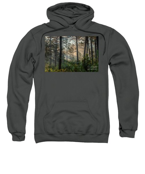 Morning Rays Sweatshirt