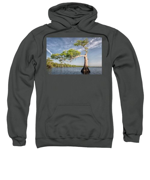 Morning Stretch Sweatshirt