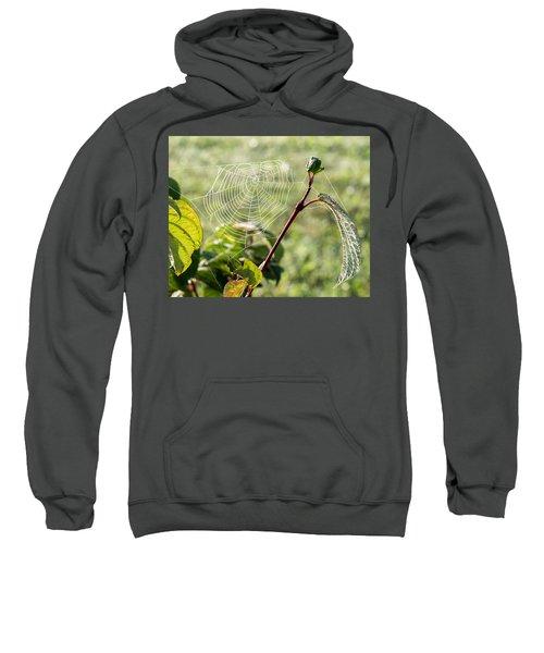 Morning Web #1 Sweatshirt