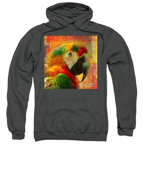 Mosaic Macaw 2016 Sweatshirt
