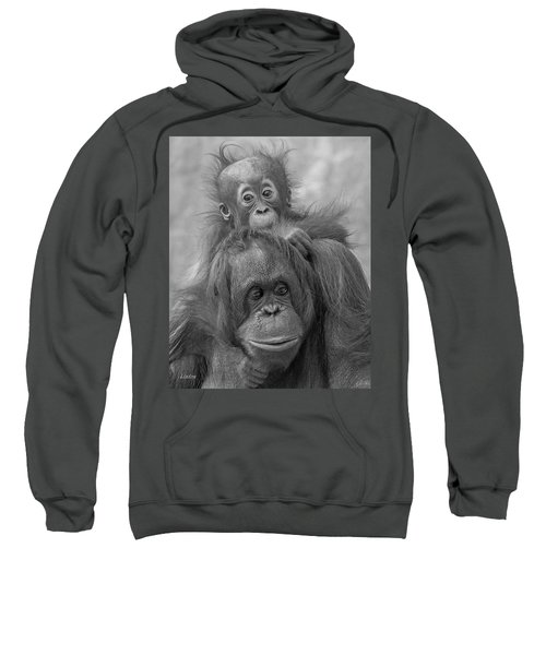 Motherhood 14 Sweatshirt