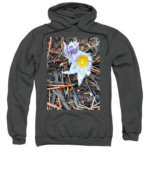 Mount Margaret Spring 14344 Sweatshirt