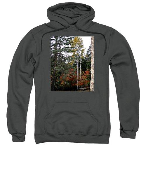 Mountain Autumn Sweatshirt