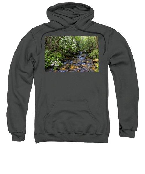 Mountain Laurels Light Up Panther Creek Sweatshirt