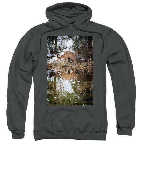 Mountain Lion Reflection Sweatshirt