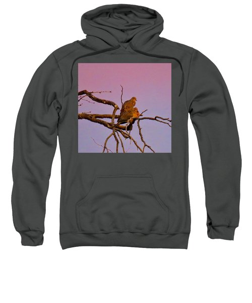Mourning Doves Sweatshirt