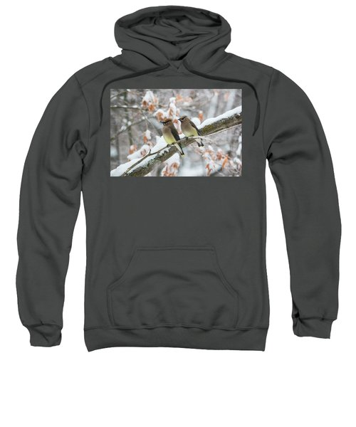 Mr. And Mrs. Cedar Wax Wing Sweatshirt