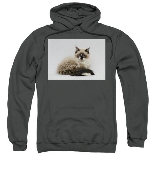 Mr. Atkin Sweatshirt
