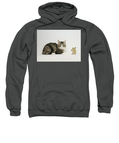 Ms Alexia And Mouse Sweatshirt