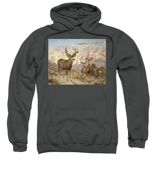 Mule Deer In The Badlands, Dawson County, Montana Sweatshirt