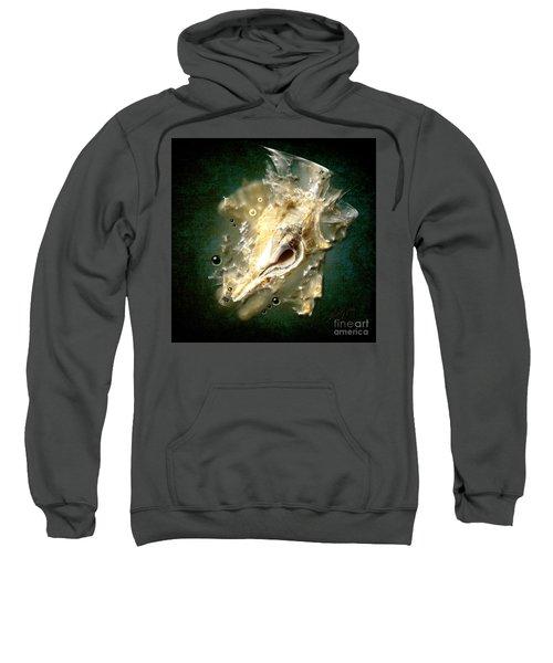Multidimensional Finds Sweatshirt