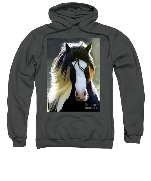 Murphy Sweatshirt