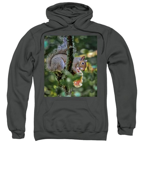 Mushroom Treat Sweatshirt