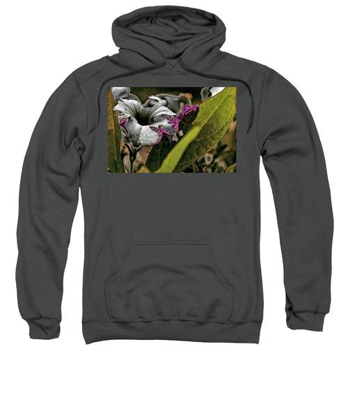 My How Your Beauti Is Evolving Sweatshirt