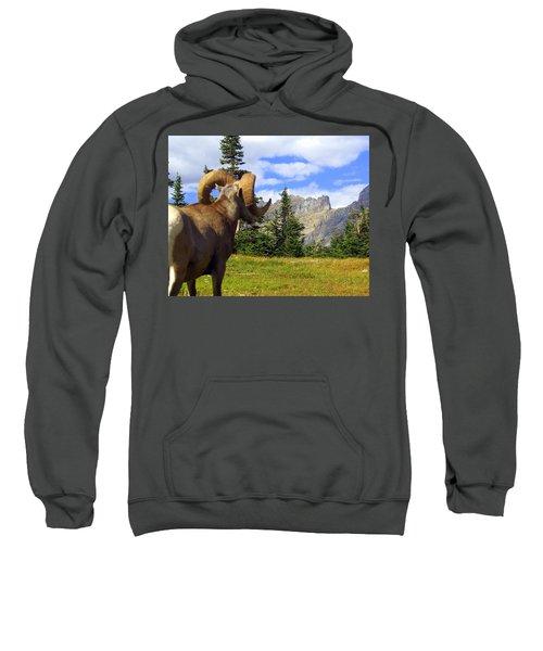 My Kingdom Sweatshirt