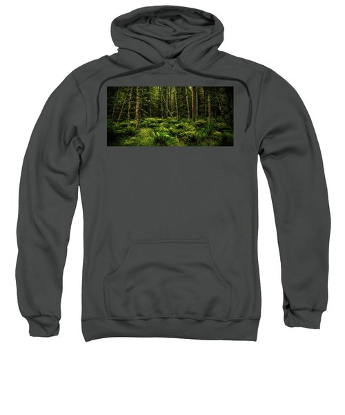 Mysterious Forest Sweatshirt