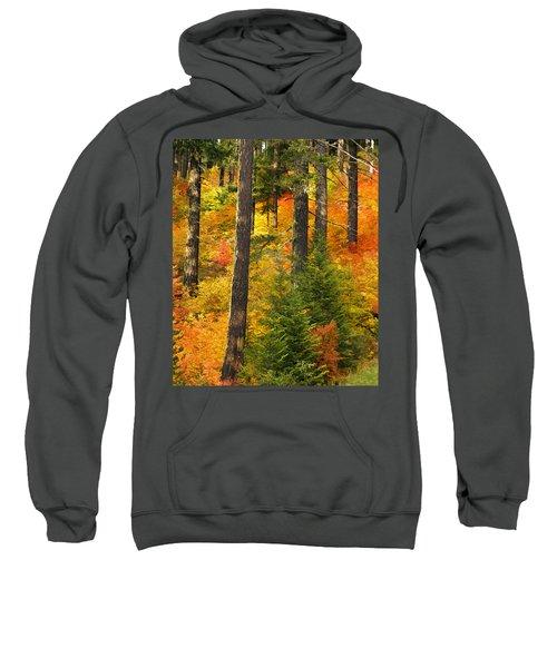 N W Autumn Sweatshirt
