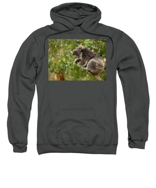 Naptime Sweatshirt