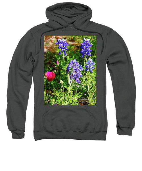 National Colors Sweatshirt