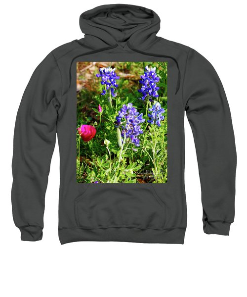 National Colors Sweatshirt