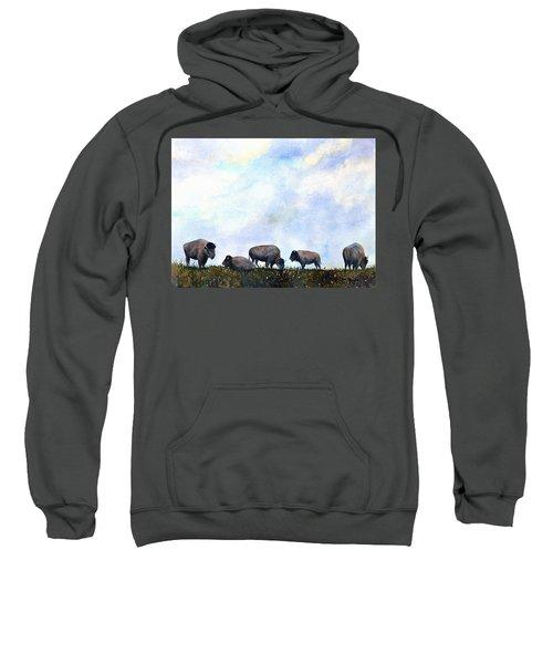 National Treasure - Bison Sweatshirt