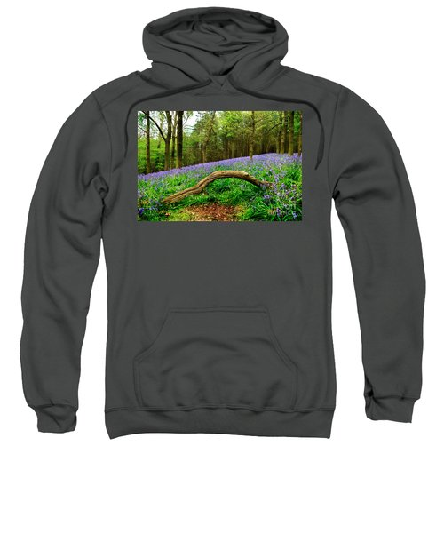 Natural Arch And Bluebells Sweatshirt