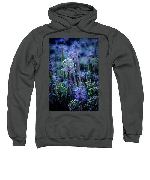 Natural Fireworks 4791 H_2 Sweatshirt