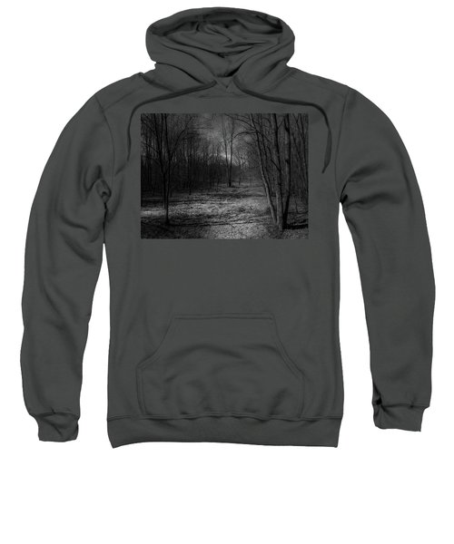 Natural Path Sweatshirt