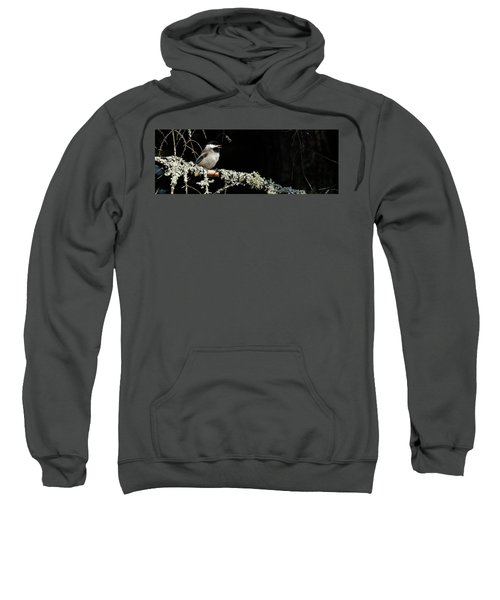 Nature Up Close Sweatshirt